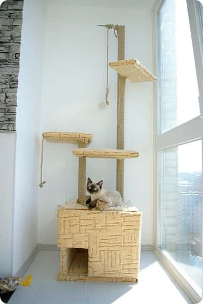 дом для кошки своими руками<br />