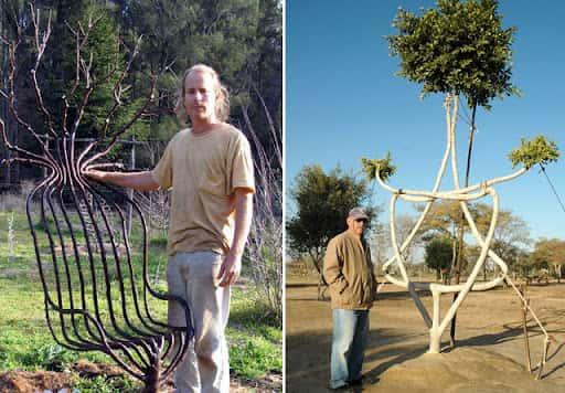 Искусство формирования деревьев (арбоскульптура) - оригинальный ладшафтный дизайн 64394