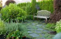 Декоративные кустарники для сада - красивое оформление ландшафта (фото 23566