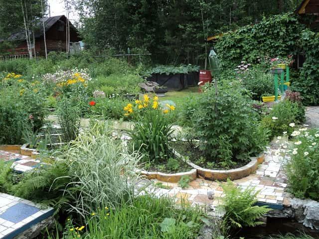 Полезные идеи для дачи и сада