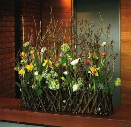Цветы декоративные живые