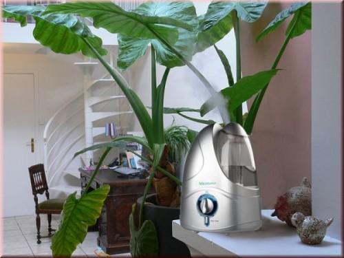 Нужен ли увлажнитель воздуха в квартире зимой