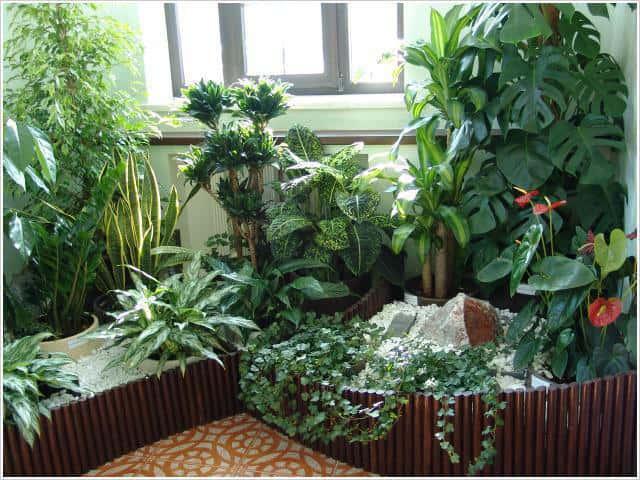 Живые и искусственные растения — прекрасное украшение любого интерьера