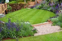 Подбор газонной травы в зависимости от типа почвы