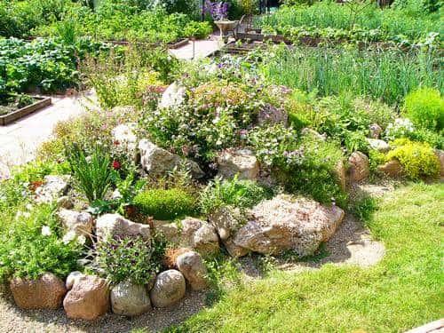 Обустройство садового участка: рокарий