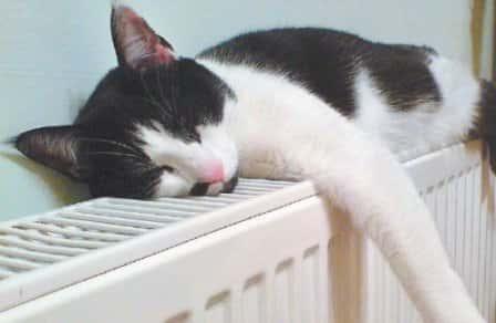 Полезные советы по сохранению тепла в доме
