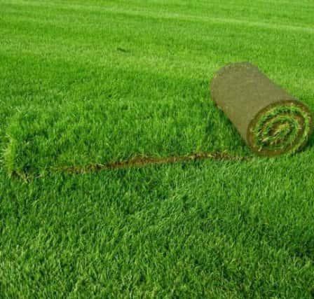 Рулонный газон – выгодное озеленение участка и легкий уход