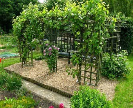 Что нужно знать для вертикального озеленения сада своими силами