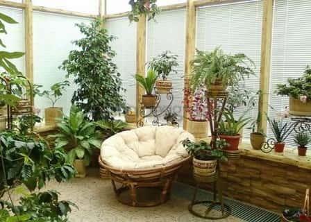 Фитодизайн и ароматизация дома