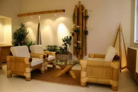 Экзотический бамбук в интерьере