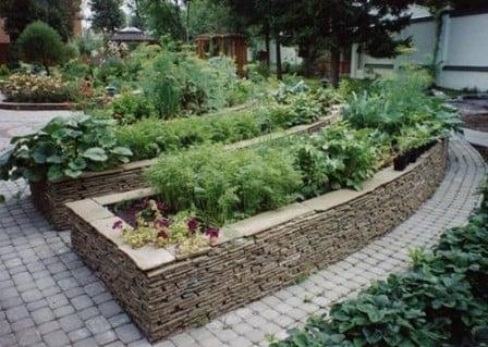 Декоративный огород – полезное украшение вашего участка