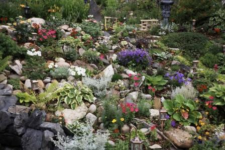 Альпийская горка и цветники – ландшафтный дизайн