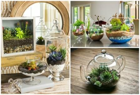 Флорариум: миниатюрный сад в вашем доме