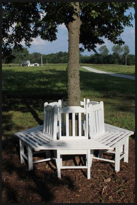 Скамья вокруг дерева из старых стульев