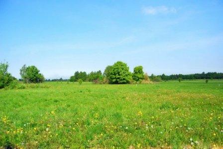 Как сэкономить при покупке земельного участка?