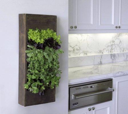 Интересные идеи для кухни - фото