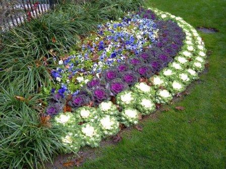 Красиво оформленные цветники на даче - фото