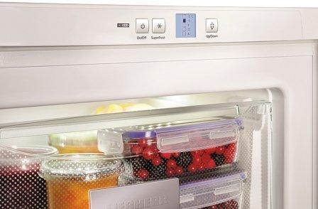 Какую морозильную камеру лучше купить для дома + отзывы владельцев