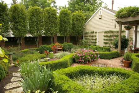 Озеленение малого пространства - законы ландшафтного проектирования