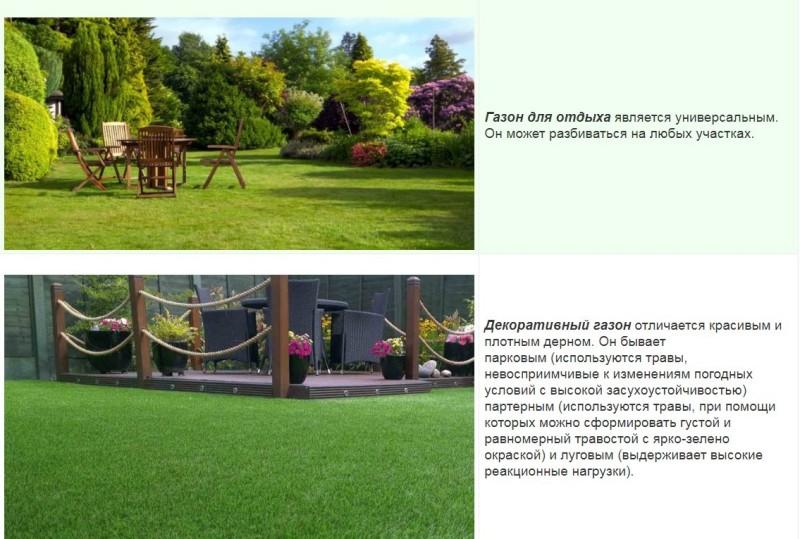 Обустройство газона в ландшафтном дизайне