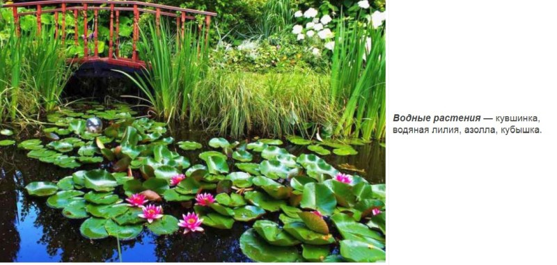 Озеленение в ландшафтном дизайне
