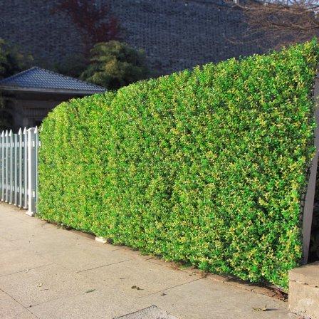 Украшаем стены и забор искусственными растениями