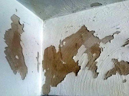 Удаление побелки и краски со стен